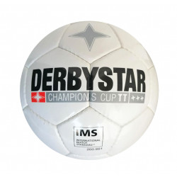 derbystra champions cup own photo.jpg1