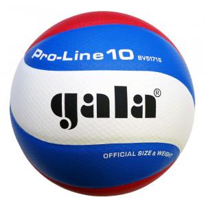 Gala Volleybal Pro Line GA5171S