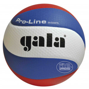Gala Volleybal Pro Line BV5591S