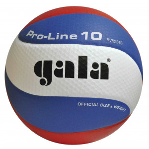 Gala Volleybal Pro Line BV5581S