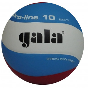 Gala Volleybal Pro Line 5571S10