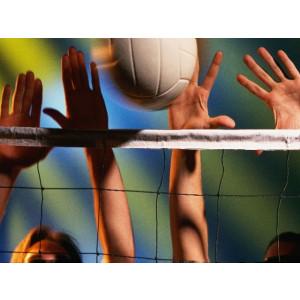 KWD Volleybalnet 3,0 mm PE, staalkabel 9,5x1,0 m, zwart